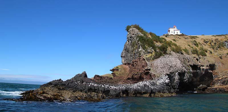 Vuurtoren op het Otago schiereiland in Port Chalmers, Nieuw-Zeeland
