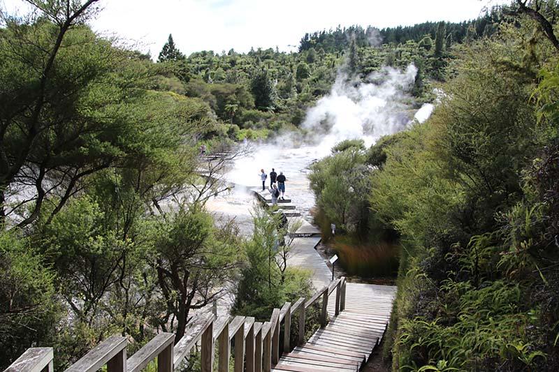 De aarde borrelt in Rotorua, Nieuw-Zeeland